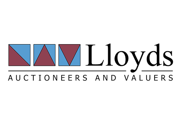 Lloyd's Auctions vehicle inspections